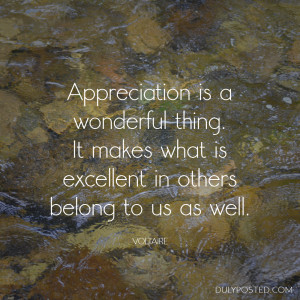 Appreciation is a wonderful thing. It makes what is excellent in ...