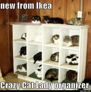 Crazy_Cat_Lady_Organizer