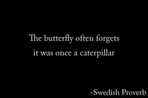 butterfly quote on Tumblr