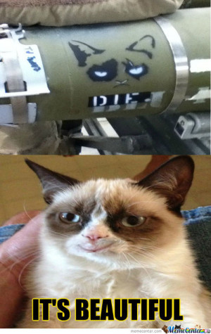 Related Pictures tard the grumpy cat quotes