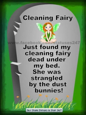 Cleaning Fairy...