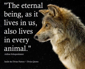 Animal - dog / wolf inspirational quote.