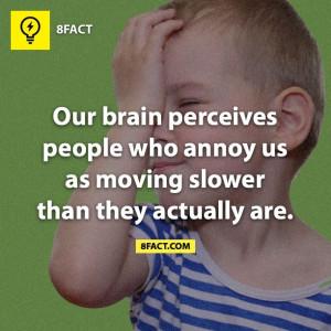 Annoying people