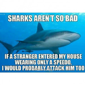 Sharks aren't so bad! #quotes…