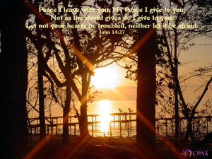 Labels: Bible Quotes Wallpapers , John 14:27 , Peace