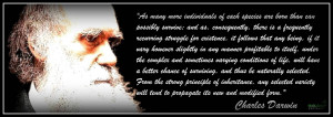 Charles Darwin Quote - Evolution Picture
