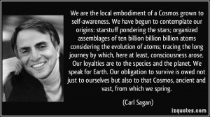 We are the local embodiment of a Cosmos grown to self-awareness. We ...