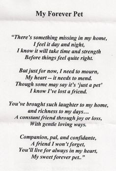 ... - Prayer Request for Karen E, and the loss of her beloved dog Tripp