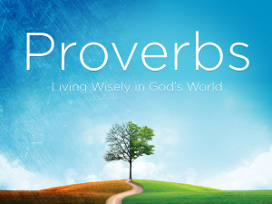 as we move into the 15th chapter of proverbs solomon addresses a wide ...