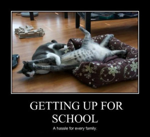 It's back to school here in Dubai. To add up to that daily routine ...