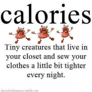 Calories funny quote photo caloriesfunnyquote.jpg