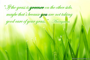 If the grass is greener on the other side, maybe that's because you ...