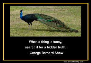 When a thing is funny, search it for a hidden truth.