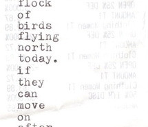 Poems About Love Birds