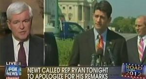 Newt Gingrich is seen on Fox News.