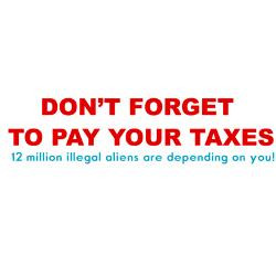 pay_your_taxes_humor_rectangle_stickers.jpg?height=250&width=250 ...