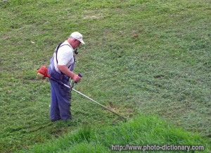 Cutting Grass Photo Picture...