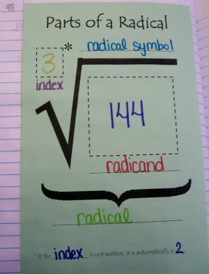 Parts of a Radical Graphic Organizer