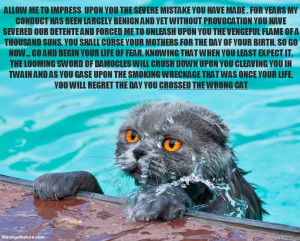 Funny Swimming Animals