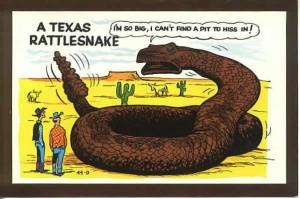 postcards u s views texas unclassified 46810 texas rattlesnack funny ...