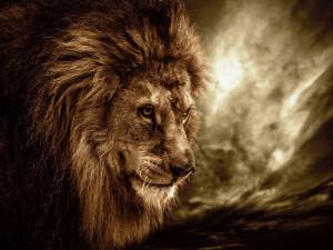 書評「ヒツジで終わる習慣、ライオンに変わる決断 ...