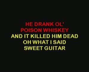 Lynyrd Skynyrd-Poison Whiskey