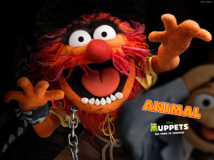 ... 10 about the new muppets movie released in the uk on 10th february