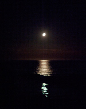 Moon.Photo by Evan Tetreault.