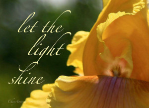 Iris quote yellow garden flower Inspirational Quote giclee Photography ...