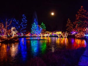 The Festival of Lights at VanDusen Gardens is back for another year ...