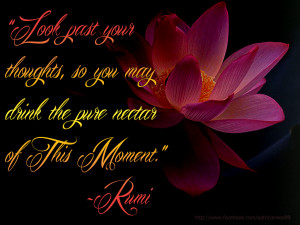 """... thoughts, so you may drink in the pure nectar of This Moment."""" ~Rumi"""