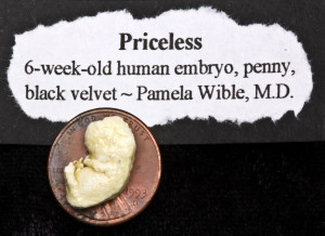 Pamela Wible pioneered the community-designed ideal medical clinic and ...