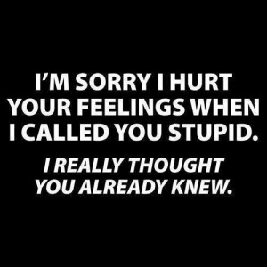 ... feelings when I called you stupid. I really thought you already knew
