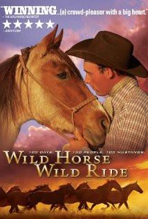 Wild Horse, Wild Ride (2011) Poster