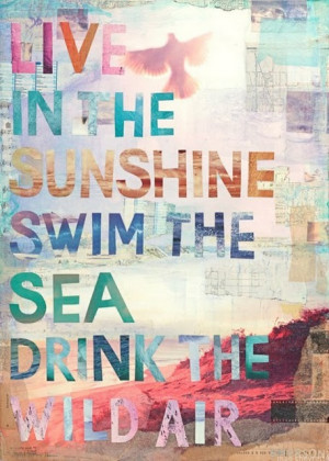 Travel Quote - 'Live in the sunshine, swim the sea, drink the wild air ...