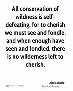... enough have seen and fondled, there is no wilderness left to cherish