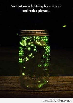 Awesome lightning bugs in a jar