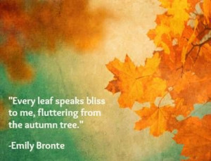 ... speaks bliss to me, fluttering from the autumn tree. -Emily Bronte