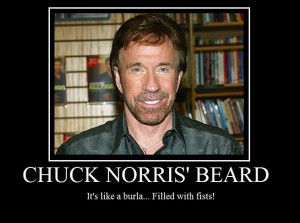 Chuck Norris Mustache has never been explored by man