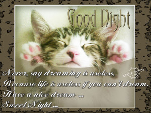 is useless if you can t dream have a nice dream sweet night anonymous