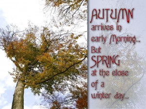 Autumn Arrives In Early Morning