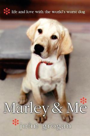 marley_and_me.jpg