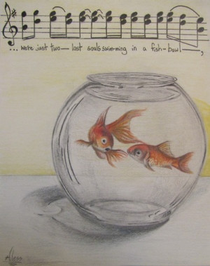 draw, pink floyd, quote, quotes, song, words