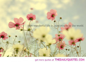 wonderful-life-quote-beautiful-pictures-with-quotes-sayings-pics.jpg