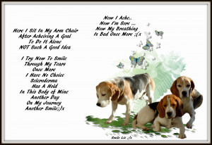 Labels: My Beagle Smiles ... My Poems ... My Quotes , Scleroderma and ...