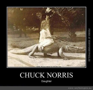 funny-picture-chuck-norris-daughter.jpg