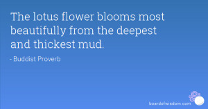 The lotus flower blooms most beautifully from the deepest and thickest ...