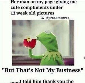 Kermit The Frog Kermit None Of My Business Kermit Tea Gif Kermit