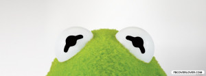 Click below to upload this Kermit the Frog Cover!