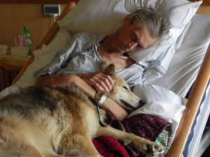 Dog-Loyalty-Best-Friend